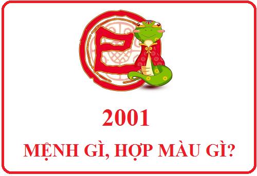 2001-hop-mau-gi