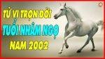 2002-menh-gi