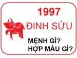 dinh-suu-1997-menh-gi