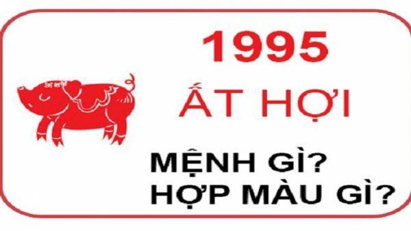sinh-nam-1995-menh-gi