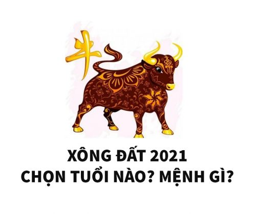 chon-tuoi-dep-xong-dat-nam-2021-cho-tuoi-at-suu