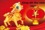chon-tuoi-xong-dat-nam-2021-cho-tuoi-giap-dan