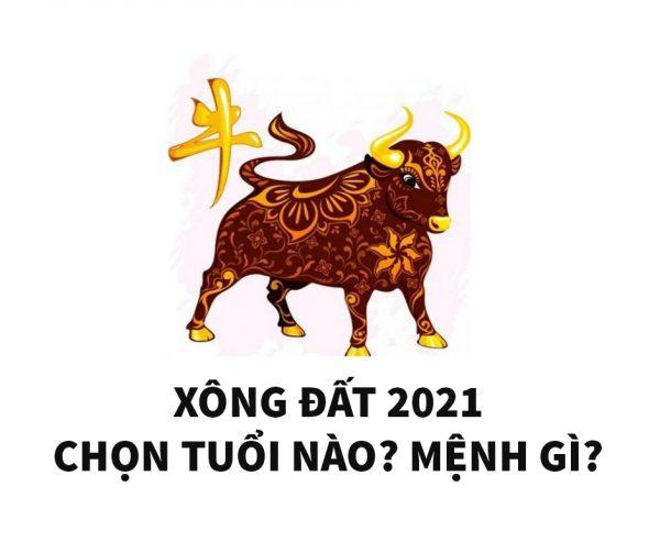 mau-ty-2008-chon-tuoi-nao-xong-nha-nam-2021