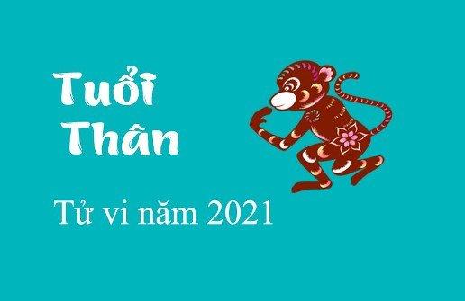 tu-vi-nam-2021-cho-tuoi-nham-than-nam-nu-mang