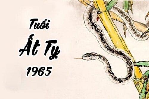 tu-vi-nam-mang-tuoi-at-ty-1965