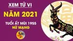 tu-vi-tuoi-at-mui-nam-2021
