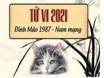 tu-vi-tuoi-dinh-mao-1987-nam-2021-nam-nu-mang