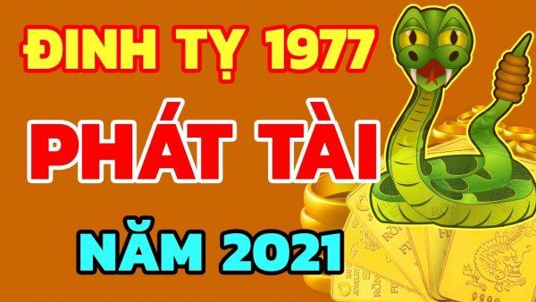 tu-vi-tuoi-dinh-ty-nam-2021-nam-mang