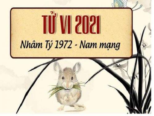 tu-vi-tuoi-nham-ty- 1972-nam-2021-nam-mang