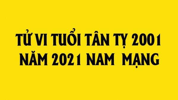 tu-vi-tuoi-tan-ty-nam-2021-nam-mang