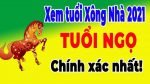 tuoi-giap-ng-1954-nam-2021-chon-tuoi-xong-nha-dep-nhat
