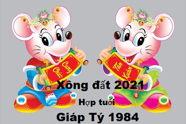 tuoi-hop-xong-nha-nam-2021-cho-tuoi-giap-ty