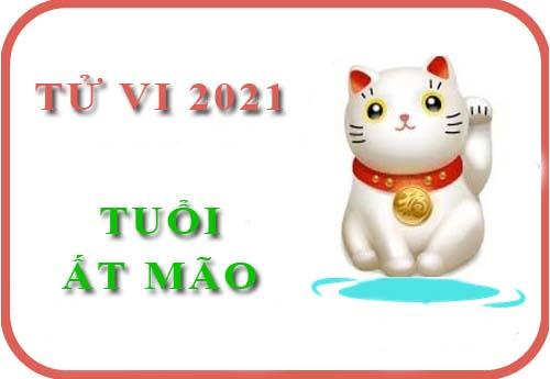 xem-tu-vi-tuoi-at-mao-nam-2021