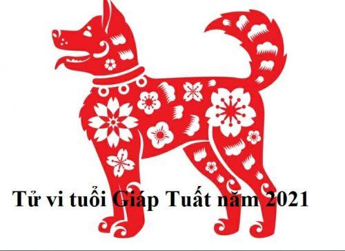 xem-tu-vi-tuoi-gia-tuat-nam-2021-nam-nu-mang