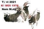 xem-tu-vi-tuoi-ky-mui-1979-nam-2021