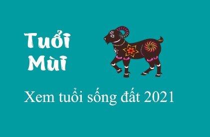 xem-tuoi-xong-dat-dau-nam-2021-cho-tuoi-dinh-mui-1967