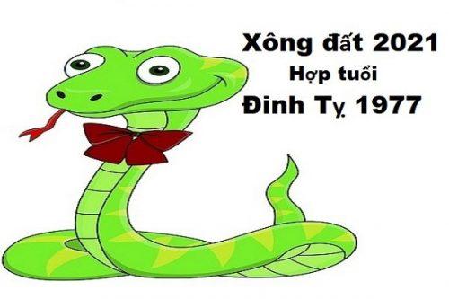 xem-tuoi-xong-dat-dau-nam-2021-cho-tuoi-dinh-ty