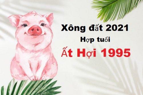 nam-2021-tuoi-at-hoi-1995-chon-tuoi-nao-xong-dat